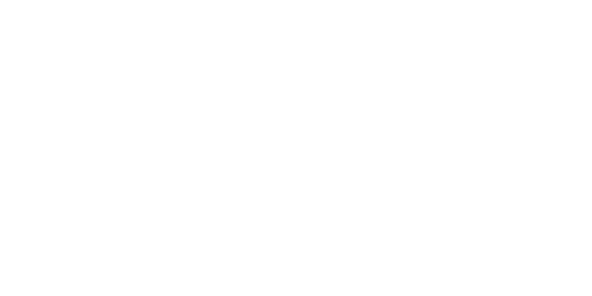 What's VOiCE!?